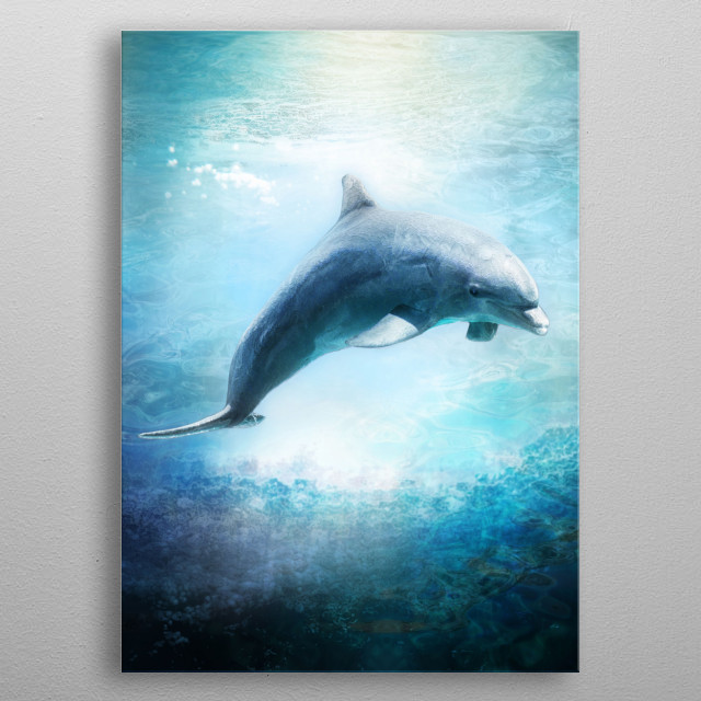 Dolphin in water with subtle lightbeams and refractive light. metal poster