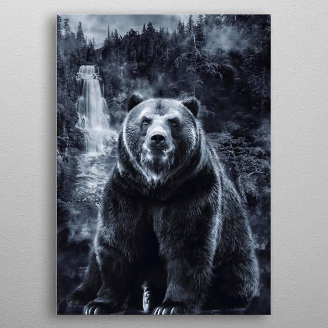 Bear 2 metal poster