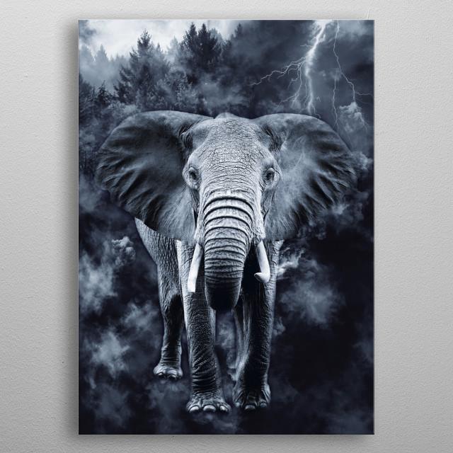 Elephant 4 metal poster