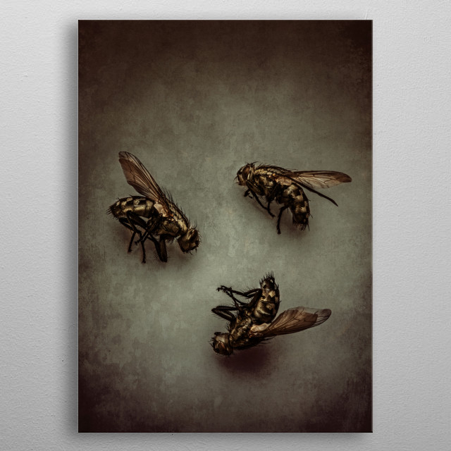 Three dead flies on a textured surface metal poster