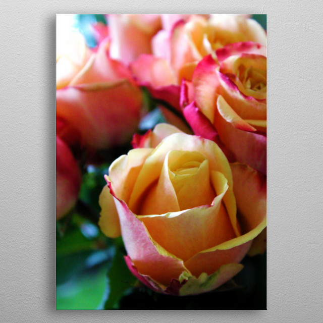 Life is like a rose. A few thorns don't make it any less beautiful.  metal poster