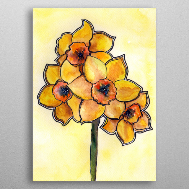 Daffodils painted with watercolors and black ink to create accents.  metal poster