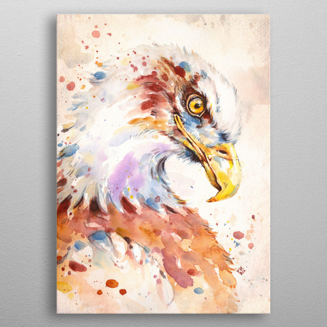 water colour painting of an eagle by Sillier Than Sally  metal poster