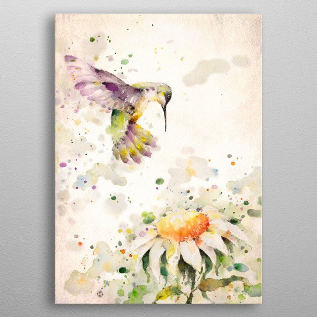 water colour painting of a hummingbird and daisy by Sillier Than Sally metal poster