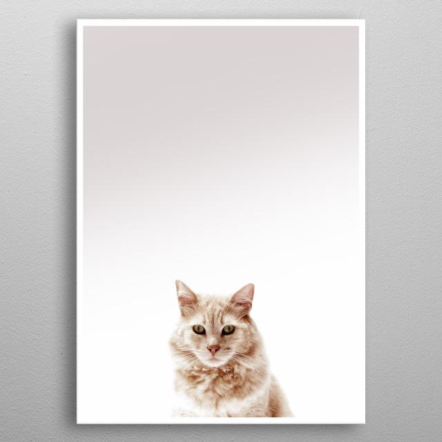 animal metal poster