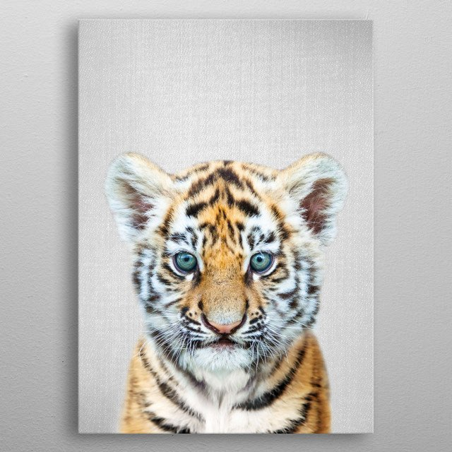 "Baby Tiger - Colorful.  For more colorful animals check out the collection in the main page of my shop ""Gal Design"". metal poster"