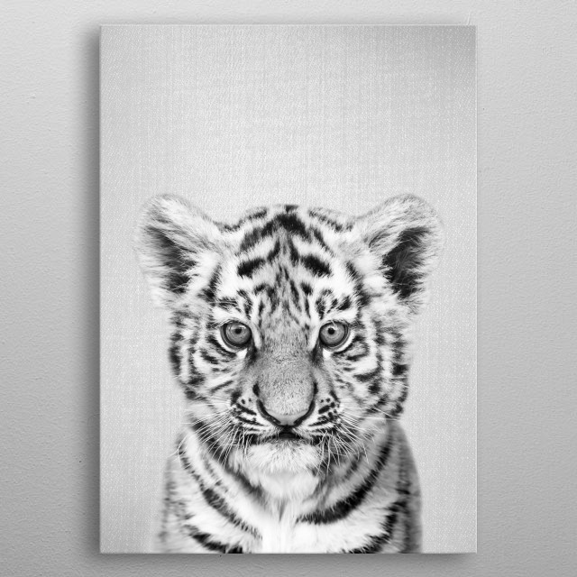 """Baby Tiger - Black & White.  For more black & white animals check out the collection in the main page of my shop """"Gal Design"""". metal poster"""