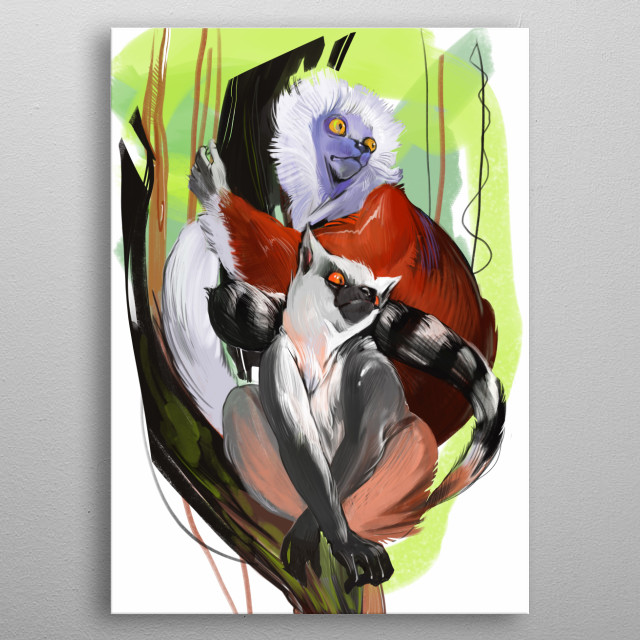 lemur and sifaka metal poster