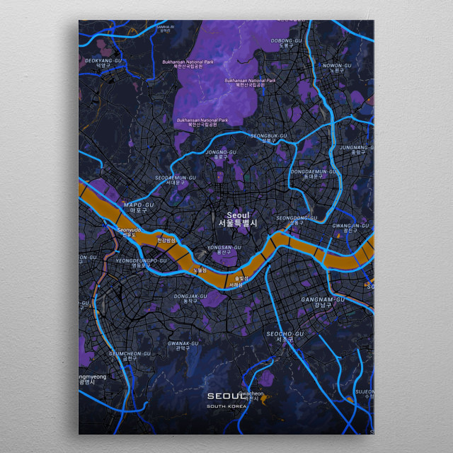 Detailed maps of Seoul South Korea metal poster