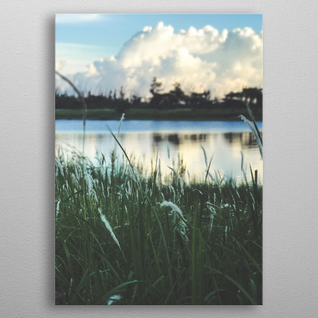 Taitung Forest Park's Flowing Lake. Taiwan. metal poster