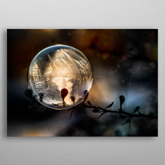 Closeup of a freezing soap bubble at sunrise metal poster