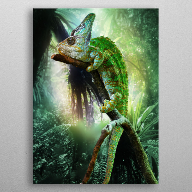 The camouflage expert. metal poster