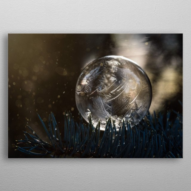 Closeup of a frozen soap bubble on the branch metal poster