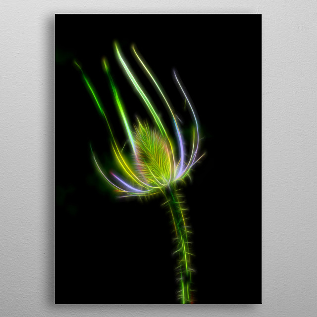thistle metal poster