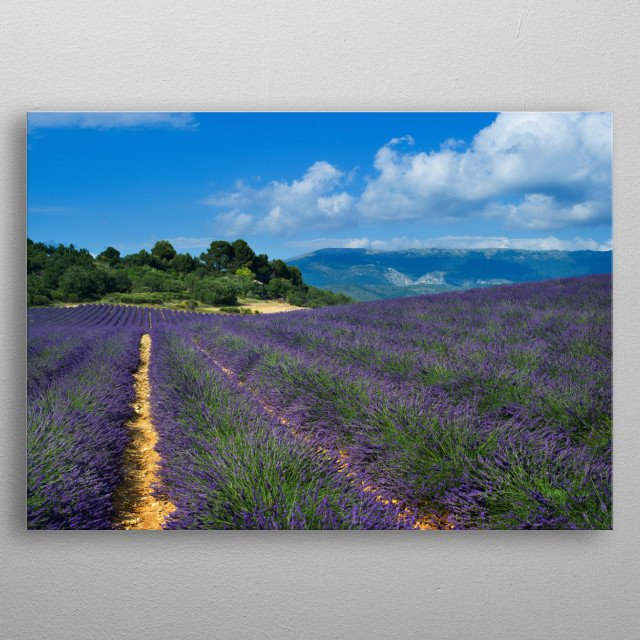 Provence, France metal poster