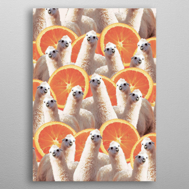 Pick up this crazy funny llama with orange collage.  metal poster