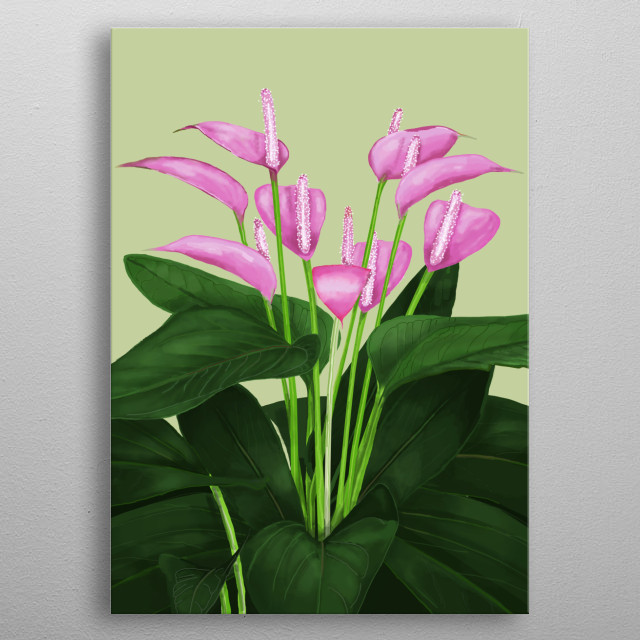 Digital illustration of antirios a beautiful tropical flower of humid tropical forest of South America metal poster
