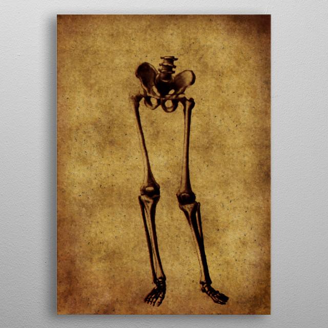 anatomic vintage illustration metal poster