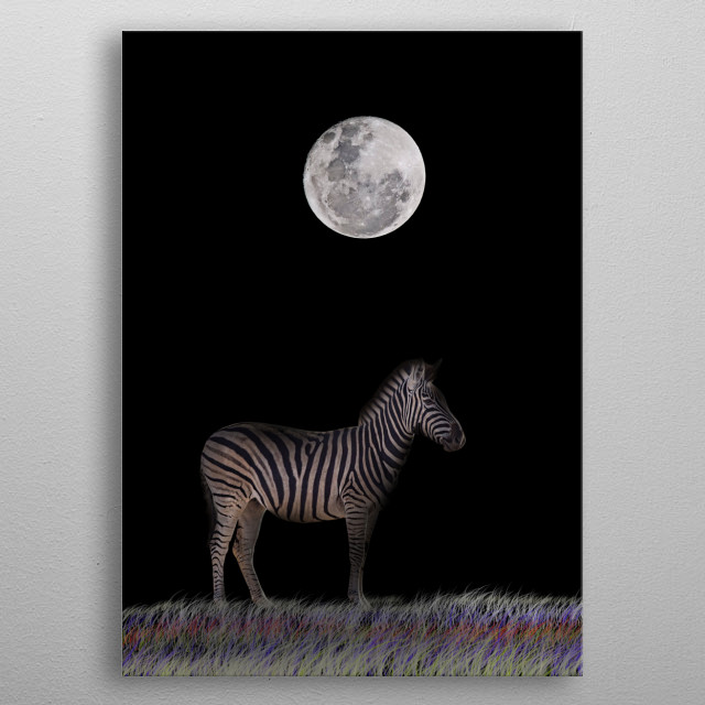 The term zebra, as used in its pejorative sense, was popularized on the television situation comedy The Jeffersons. The term was used by the metal poster