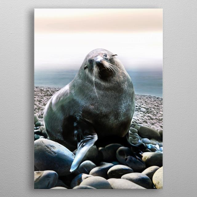 Seal with wistful eyes - groovy bluesy beastie.  metal poster
