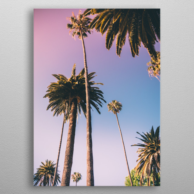 Cotton candy sky behind tall skinny palm trees. metal poster