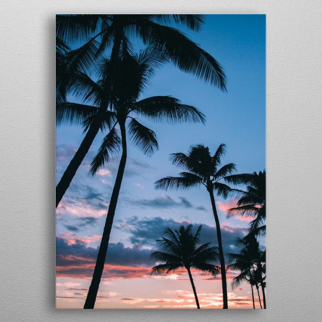 Palm trees swaying in the wind at dusk. metal poster