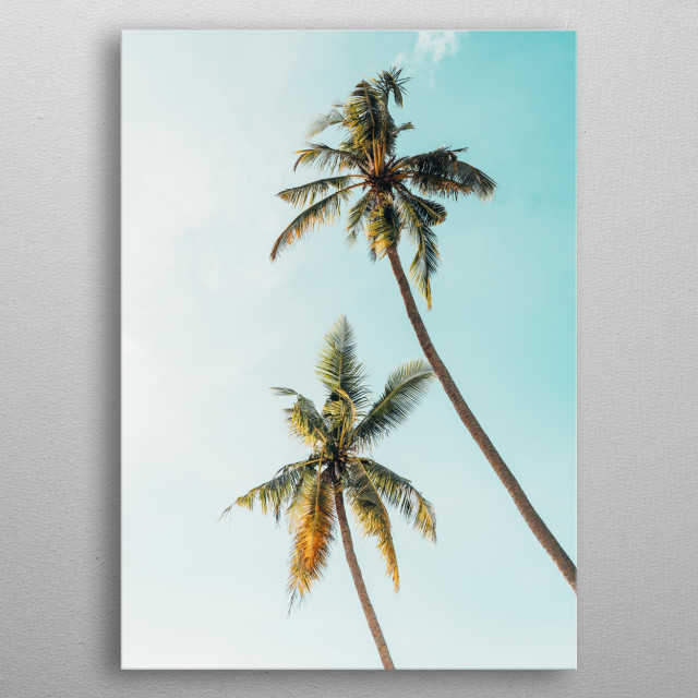 Two tall skinny palm trees. Light blue sky with white clouds. metal poster