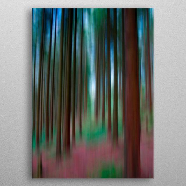 Fine art photograph of a woodland path in Snowdonia on a summer's day. metal poster