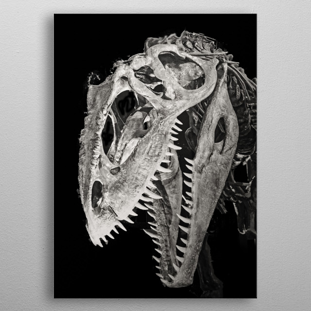 A skull of a prehistoric predator. metal poster