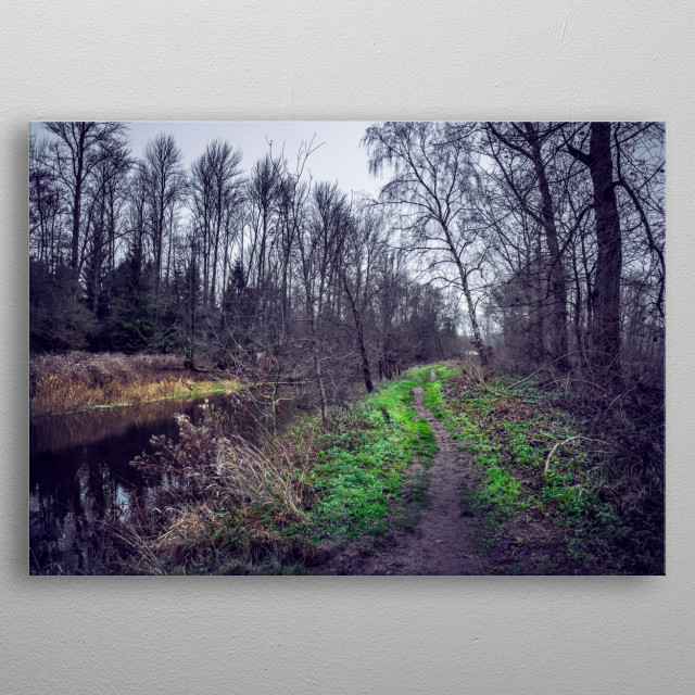 River and forest in Suffolk, UK metal poster