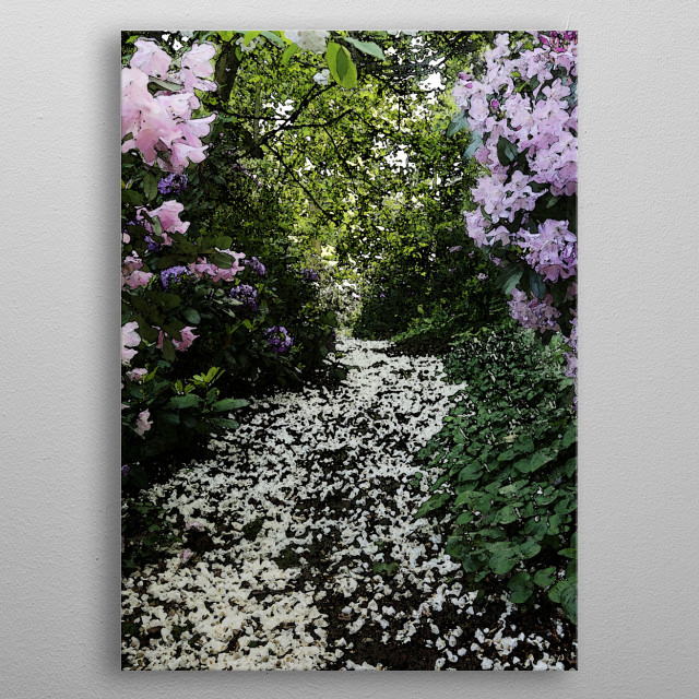 A walk at water garden metal poster