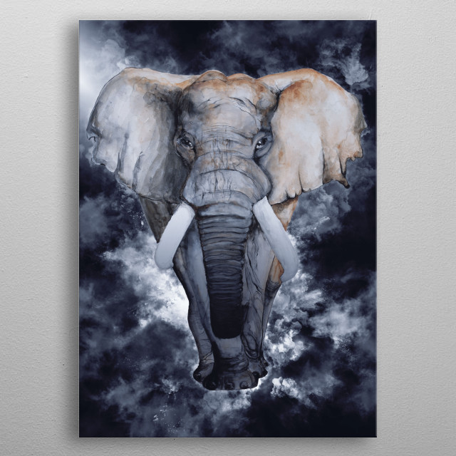 Elephant 5 metal poster