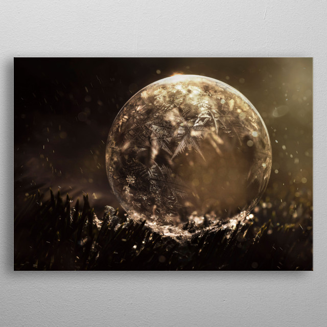 Frozen soap bubble on the christmas tree branch metal poster