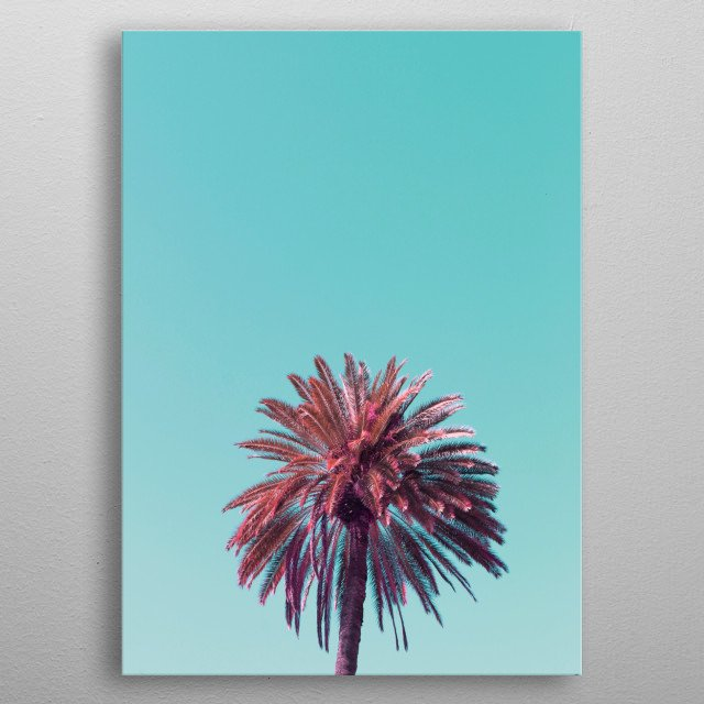 A tropical tree at Ala Moana Beach in Hawaii metal poster