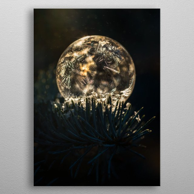 Closeup of a frozen soap bubble on the branch in the morning sunlight metal poster