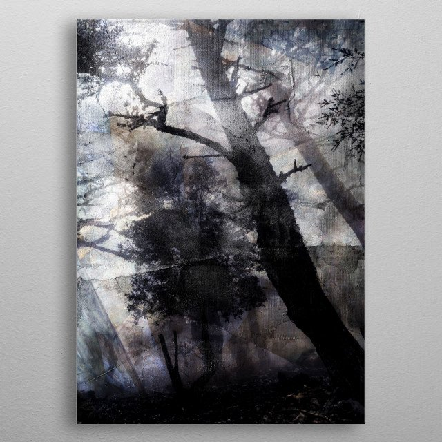 Photography digitally manipulated metal poster