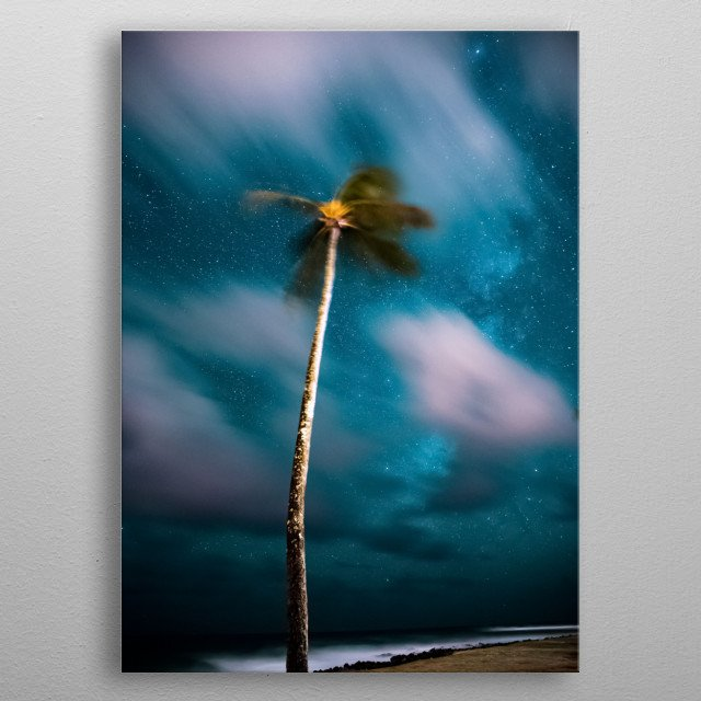 Palm Trees 20 metal poster