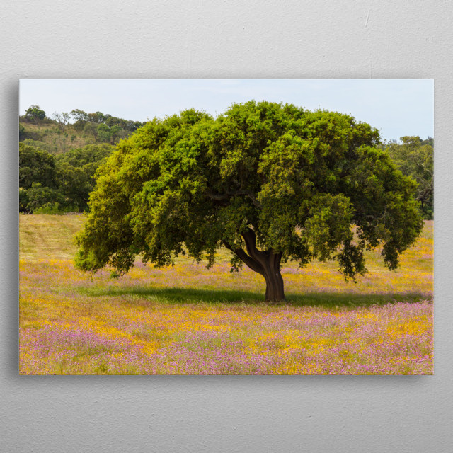 Photography of a farm field covered by colourful flowers and a tree. metal poster