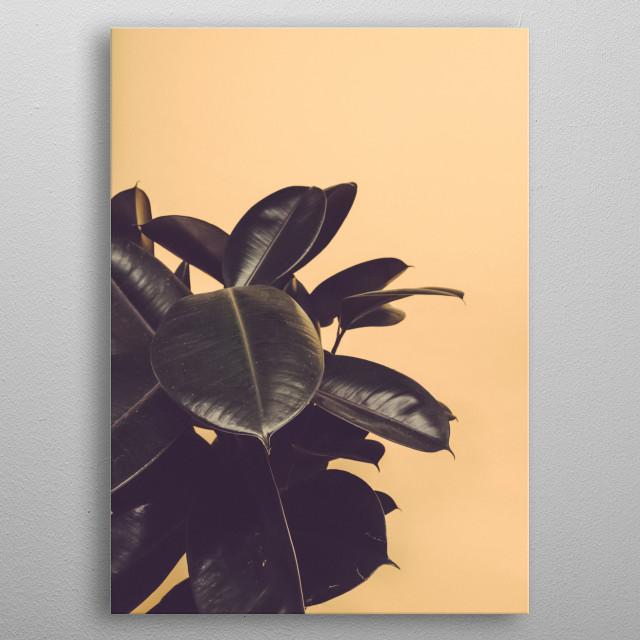 Plants 41 metal poster