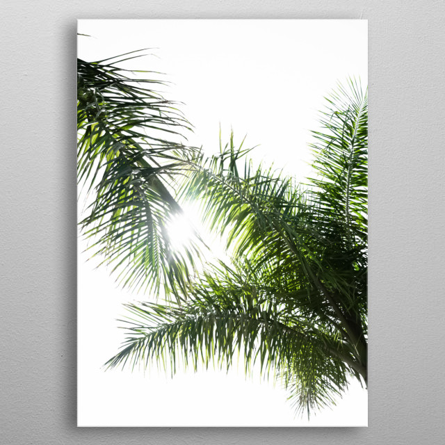 Plants 66 metal poster