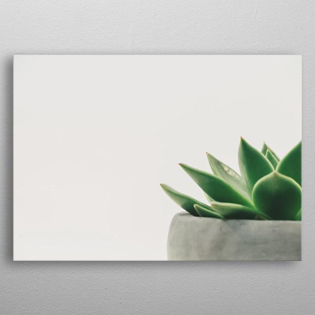 Plants 32 metal poster