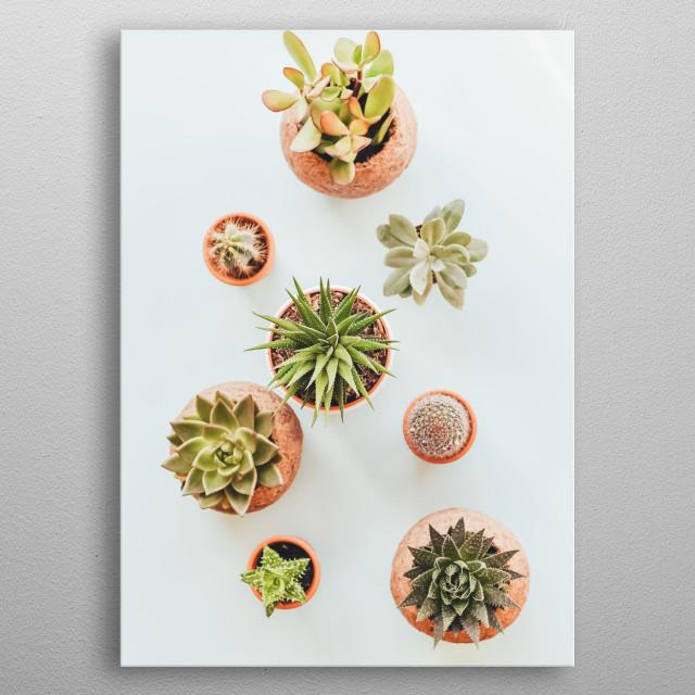 Plants 51 metal poster