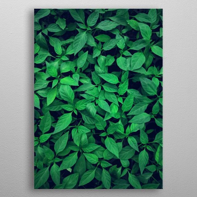 Plants 28 metal poster