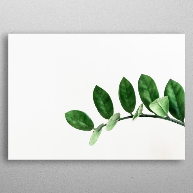 Plants 46 metal poster