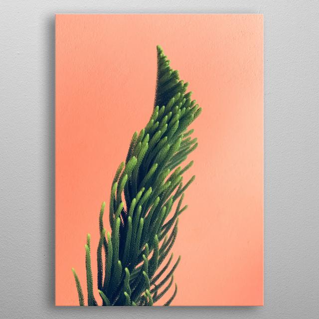 Plants 11 metal poster
