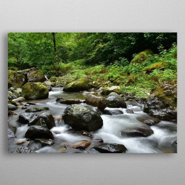 Forest river landscape metal poster
