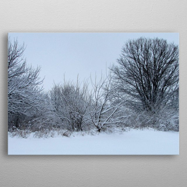 Snow covered trees metal poster