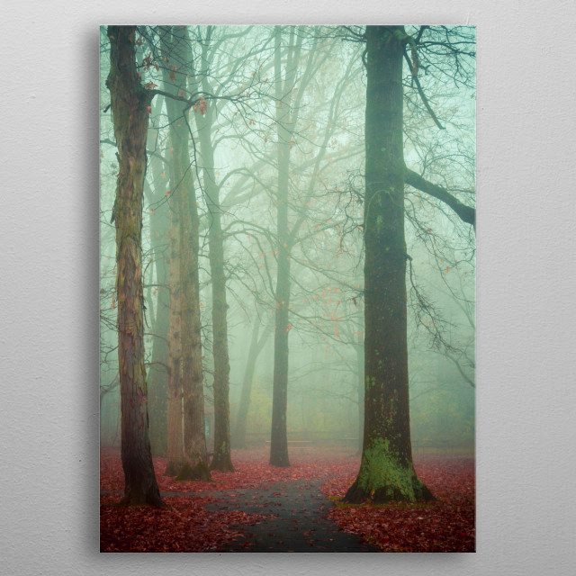 Moody ethereal photograph of trees on a foggy autumn day. metal poster