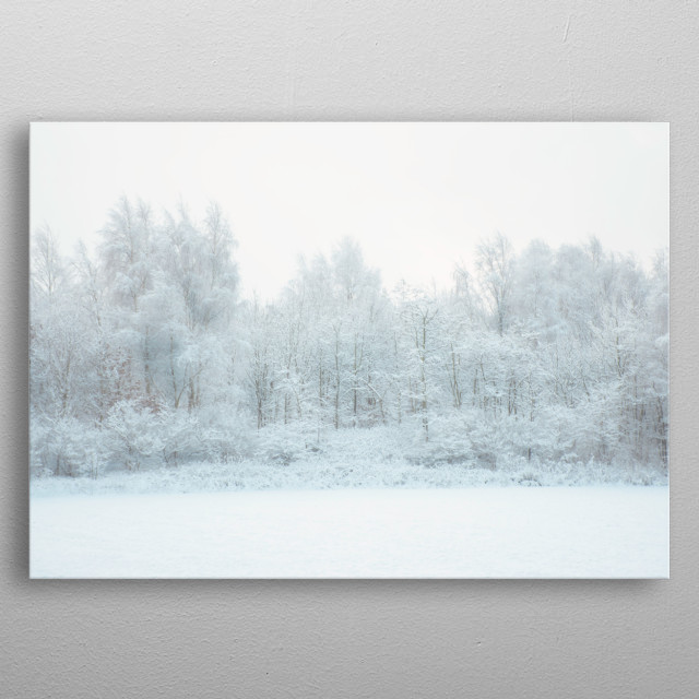 A snowy forest metal poster