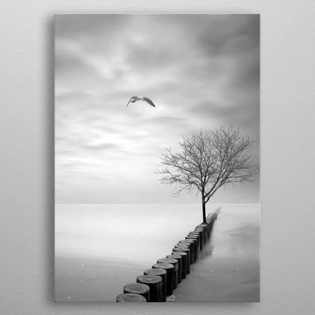 Little surreal vibe here. Long exposure photograpy metal poster